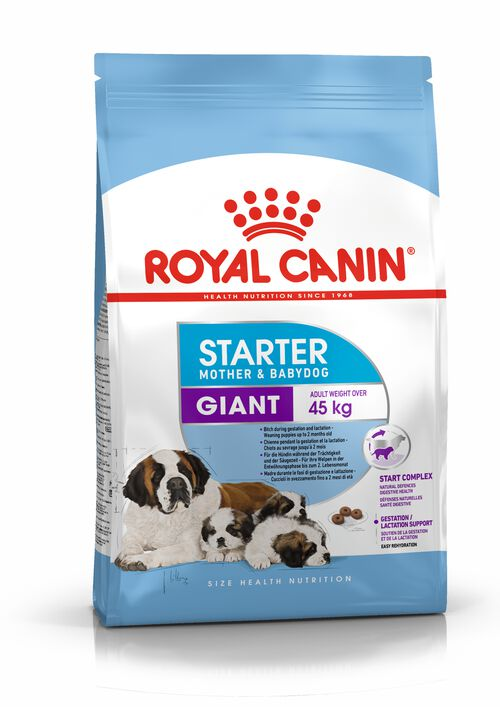Starter Mother & Babydog Giant