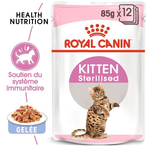 Kitten Sterilised en Gelée