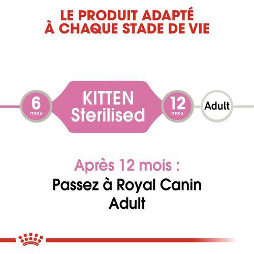 Kitten Sterilised en Sauce x24