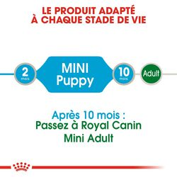 Mini Puppy en Sauce