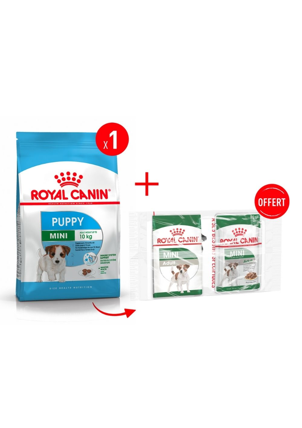 Mini Puppy product image