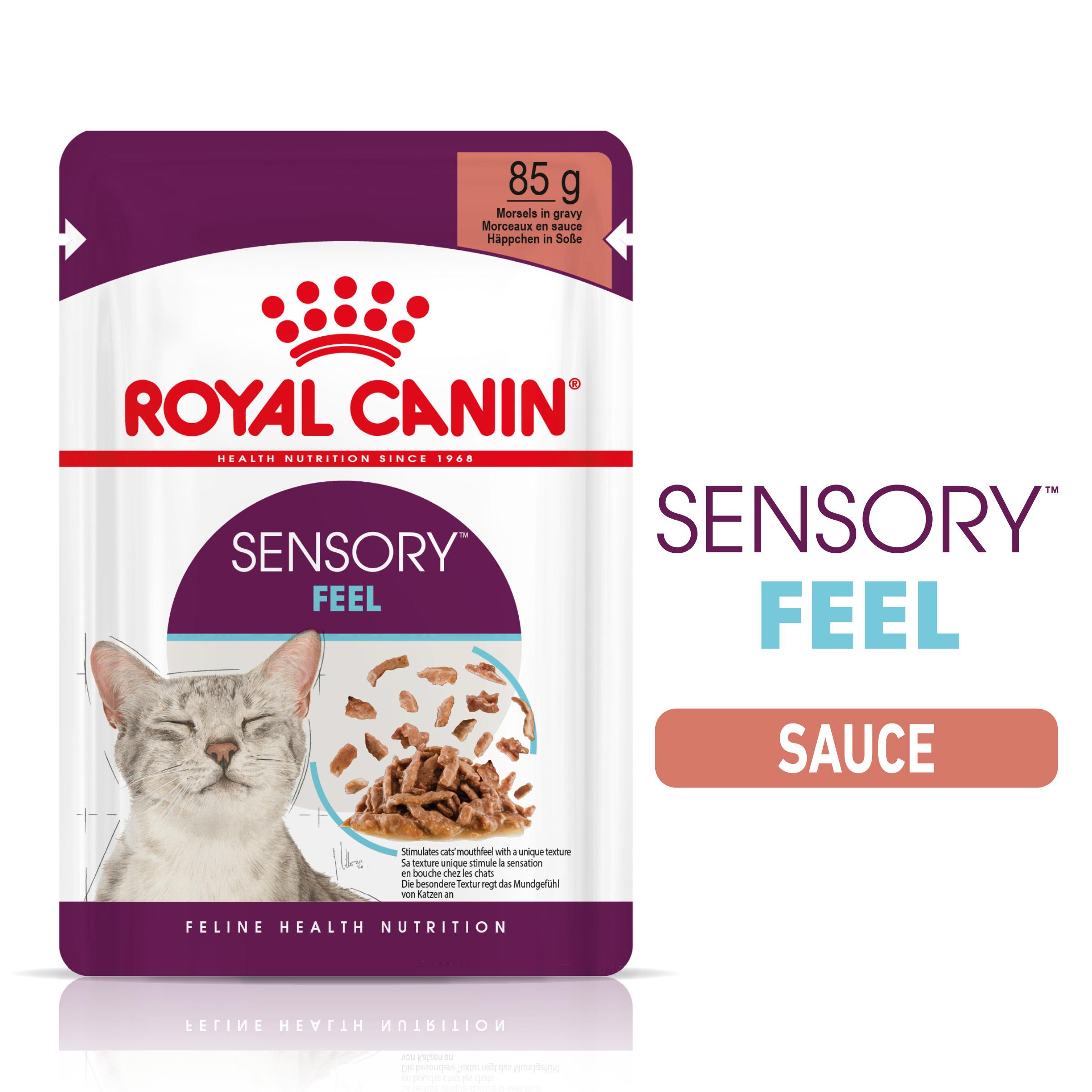 Sensory™ Feel sauce
