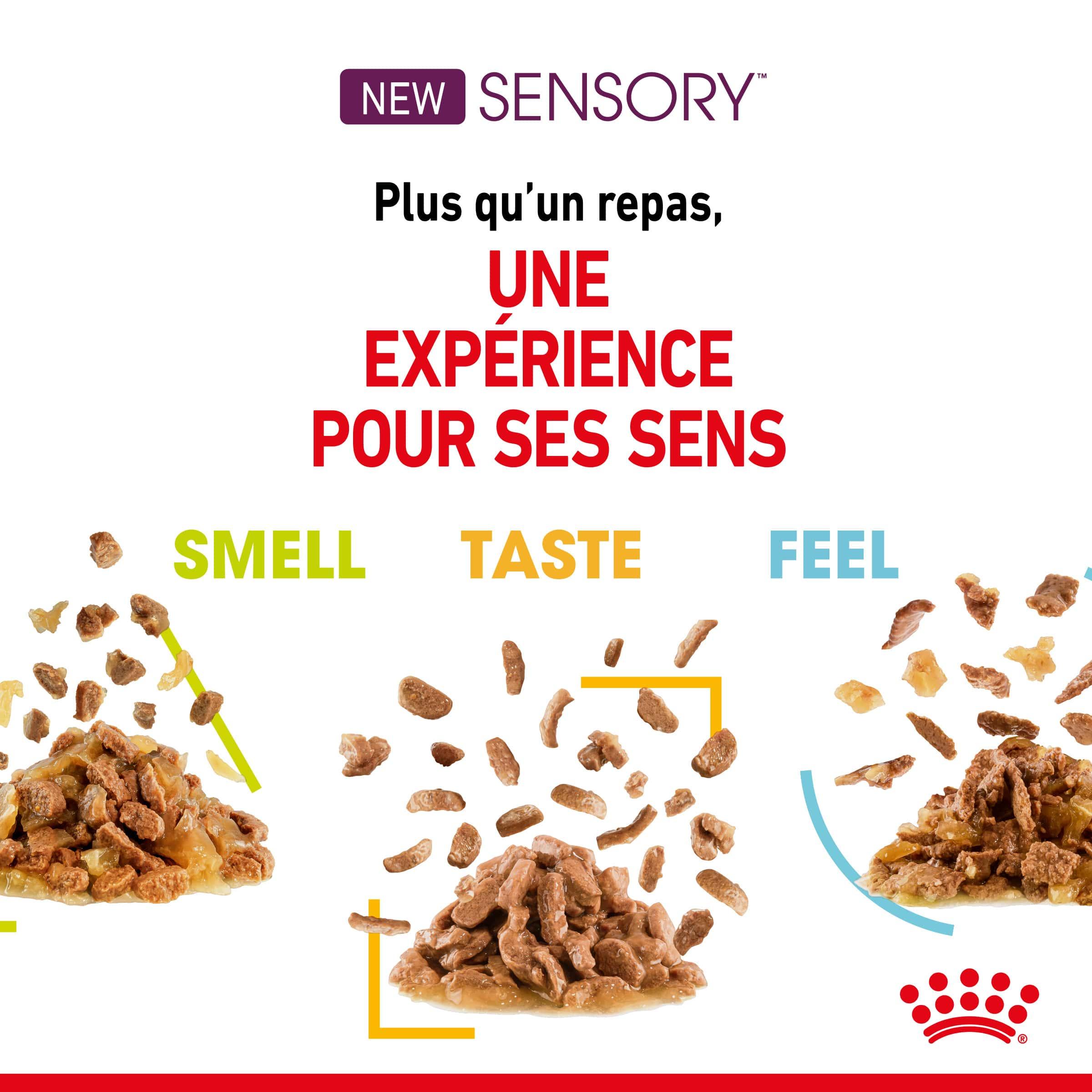 Sensory™ Feel gelée