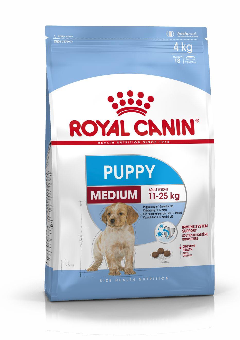 Medium Puppy