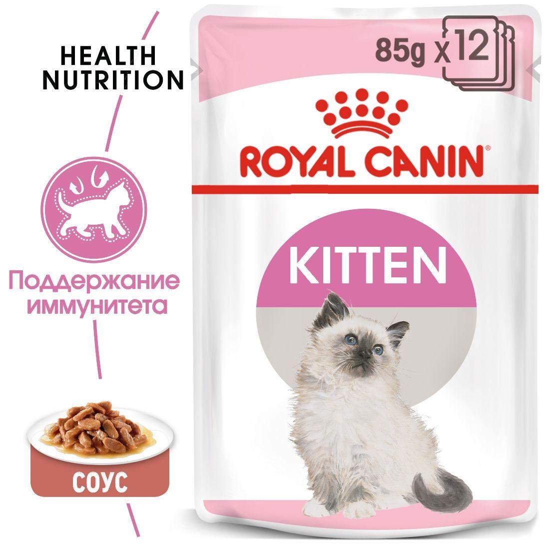 Kitten (в соусе)