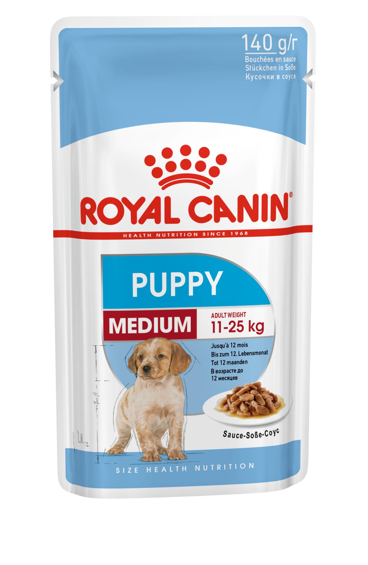 Medium Puppy (в соусе)