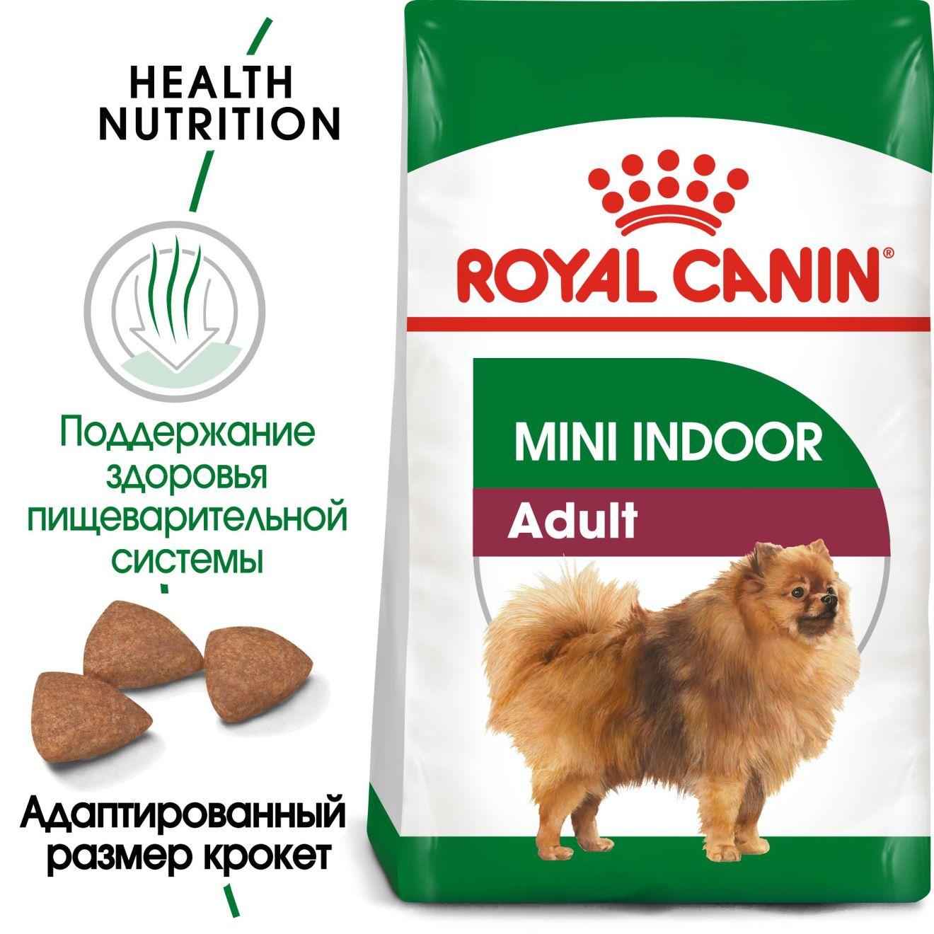 Mini Indoor Adult