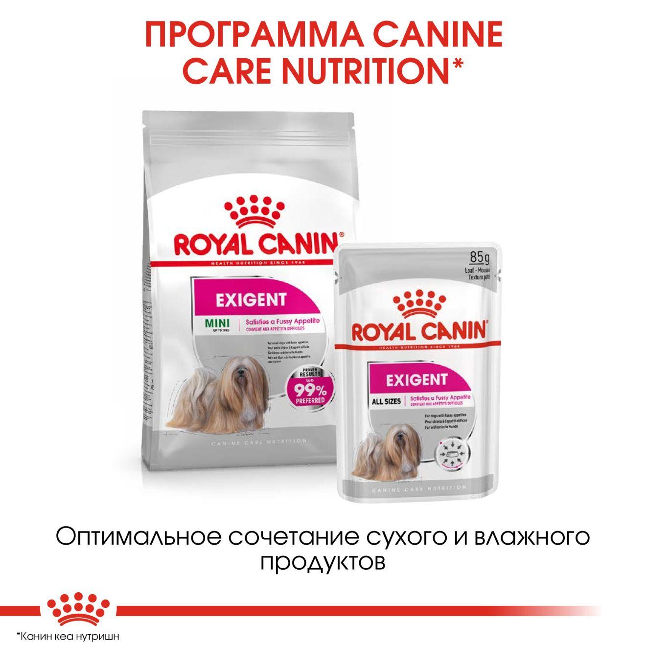 Exigent Canin Adult (в паштете)