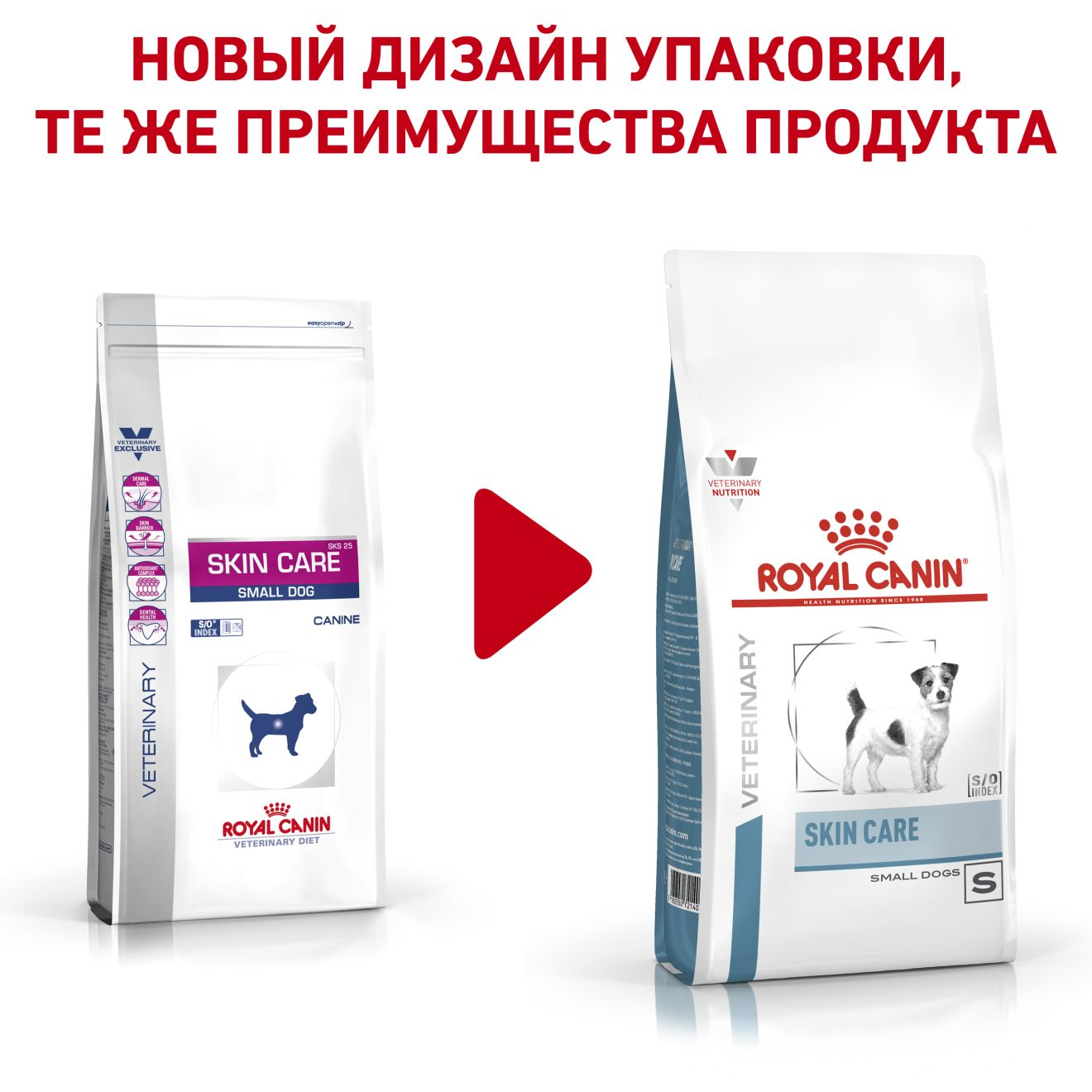 Skin Care Small Dogs
