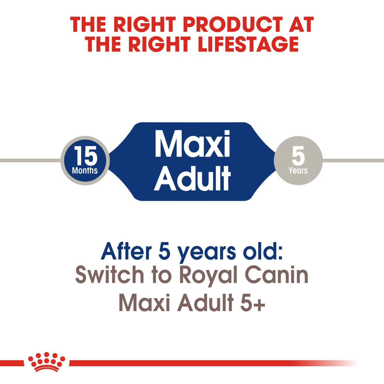 Maxi Adult